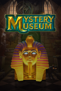 Mystery Museum
